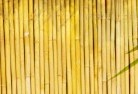Acton ACT Bamboo fencing 4
