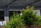 Acton ACT Chainlink fencing 13